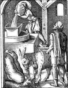Ein Müller bei der Arbeit (Darstellung aus dem 16. Jahrhundert)